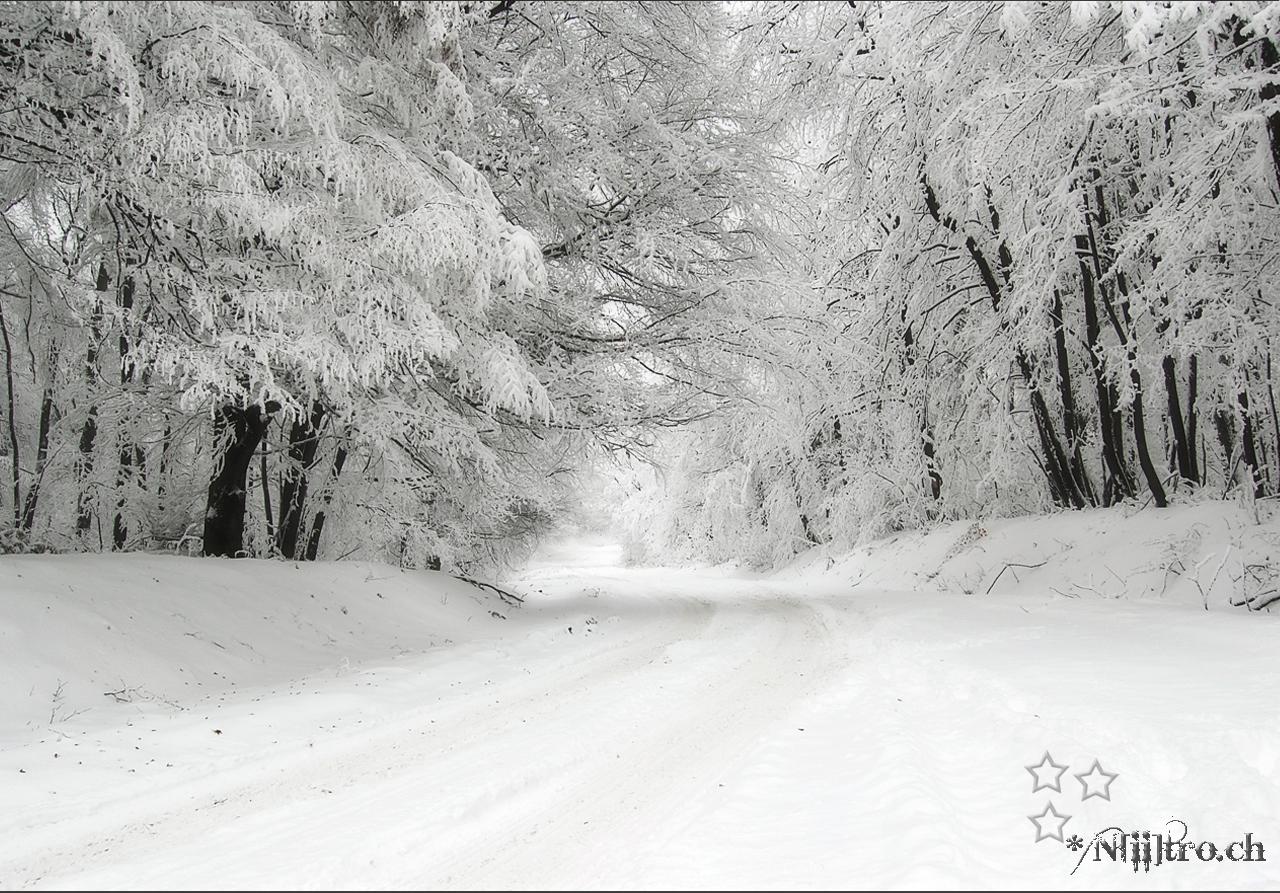 dans fond ecran neige neigeG